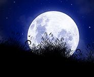 MoonSpells