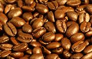 Beans4Eva